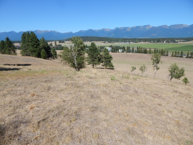 Grant to help fund 200 acres of new conservation near Bigfork