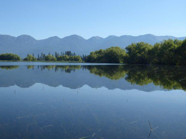 Vital bird habitat conserved on Mill Creek in lower valley