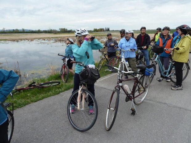 Bike and Bird the Lower Flathead Valley