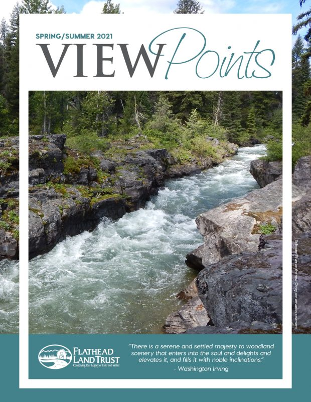 Spring/Summer Viewpoints Newsletter is Here!