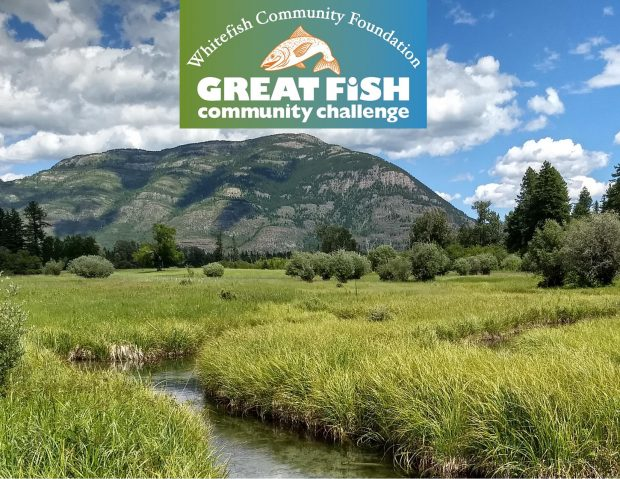 Great Fish Community Challenge