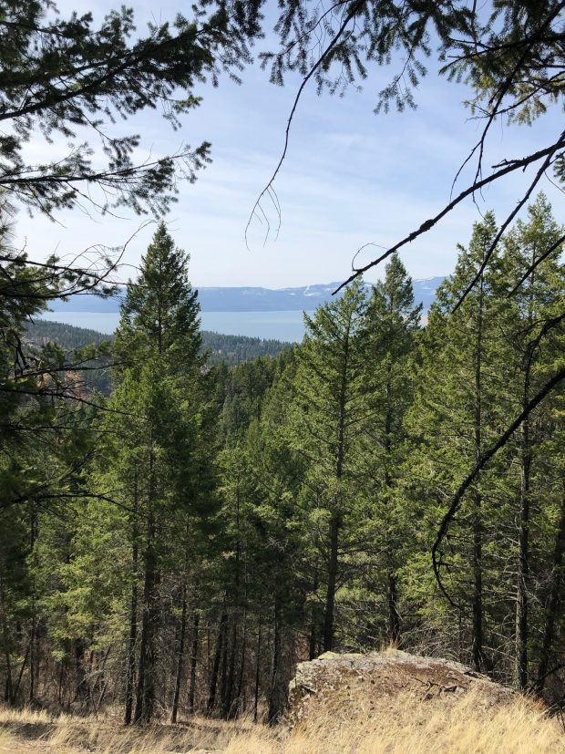 Bigfork Community Trails and Conservation Project